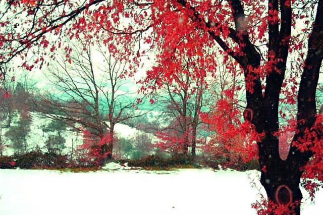 #EasyLoves | L'atmosfera natalizia si respira ancora!